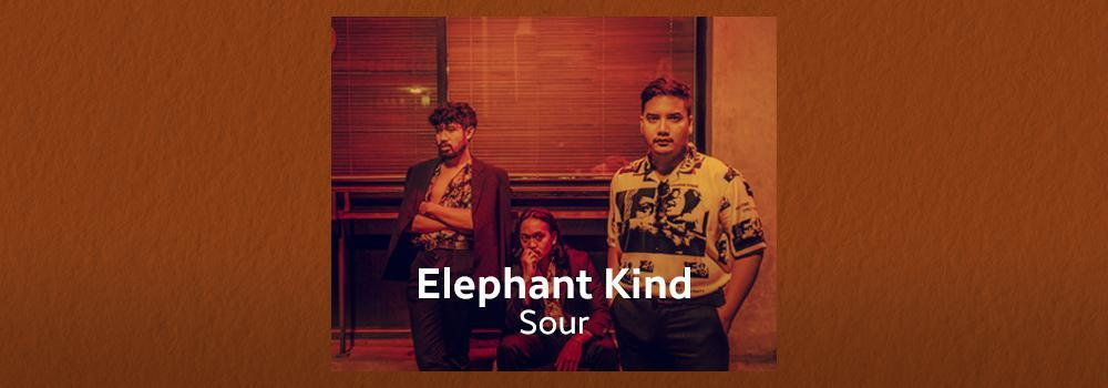 Elephant Kind - Sour