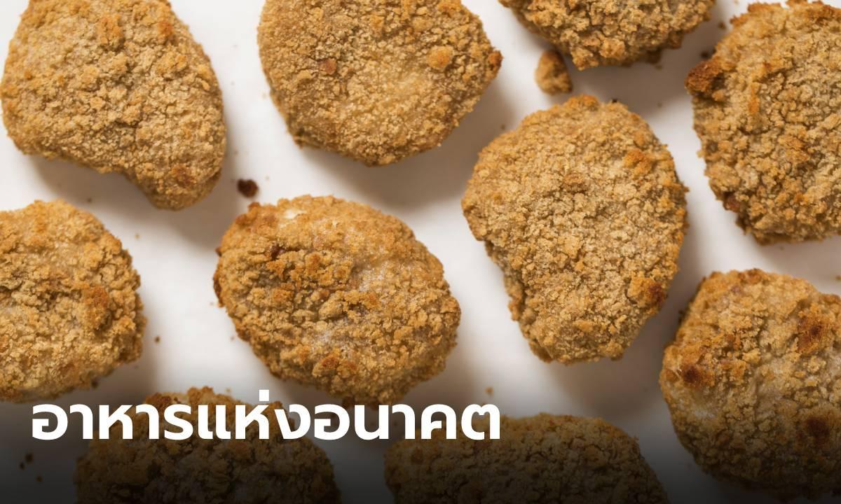 """สิงคโปร์ไฟเขียวขาย """"เนื้อไก่เพาะเลี้ยง"""" ประเทศแรกในโลก"""