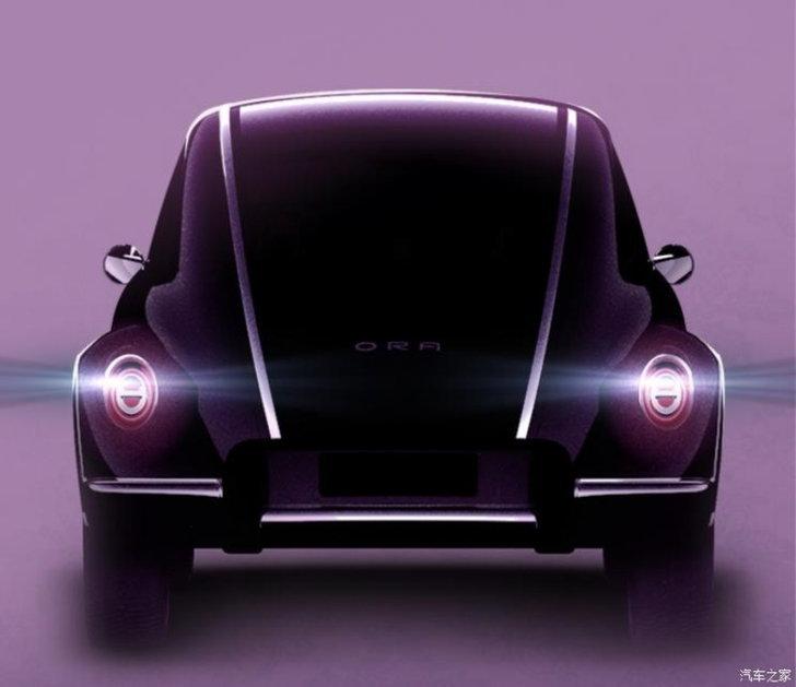 ora_beetle_02