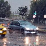 """""""ดอกยาง"""" สำคัญแค่ไหน ในช่วงหน้าฝน"""
