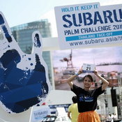 Subaru Palm Challenge 2016