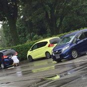 Honda Freed Modulo