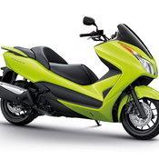 Honda forza Green