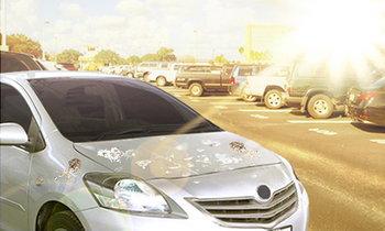 วิธีดูแลรักษารถที่ต้องจอดตากแดดบ่อยๆ