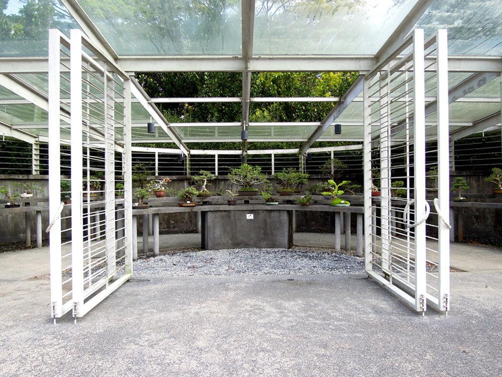 Botanic_garden13
