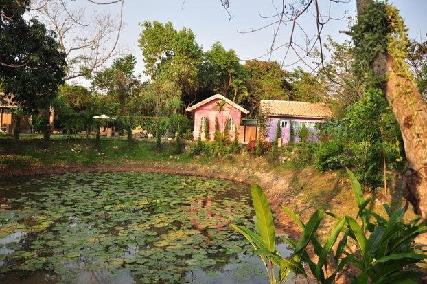 บ่อน้ำขนาดใหญ่ กลางสวน