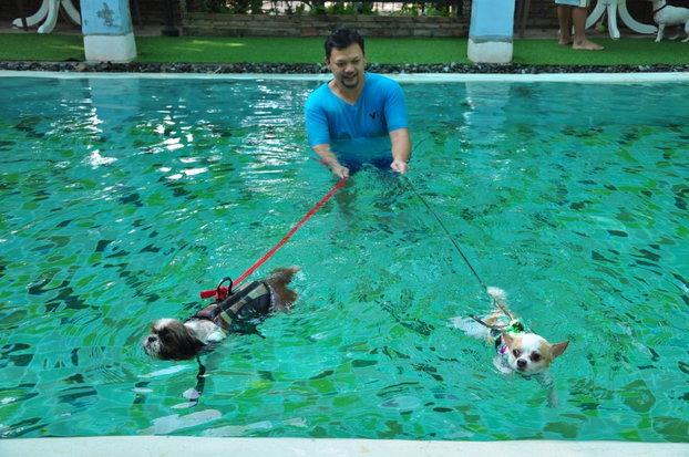 กิจกรรมว่ายน้ำ