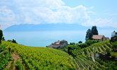 Epesse เมืองมรดกโลกที่หลบมุม...120 นาทีที่หยุดหายใจ - สวิตเซอร์แลนด์