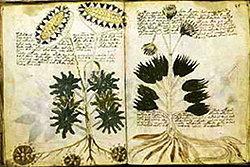 10 บทความปริศนาจากประวัติศาสตร์โลก