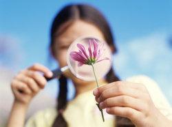 ความหมายดีๆ จากดอกไม้