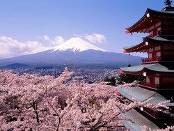 เปิดขั้นตอนการสมัครขอรับทุนญี่ปุ่น