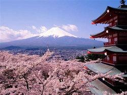 รัฐบาลญี่ปุ่นมอบทุน ปริญญาตรีและวิจัย