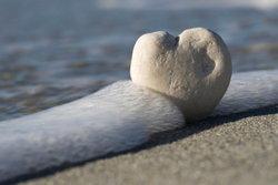 ความรักไม่เคยทำใครเจ็บ