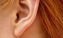 ติ่งหูมีไว้ทำอะไร