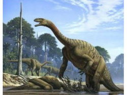 ก๊าซจากกระเพาะไดโนเสาร์ทำให้โลกร้อน