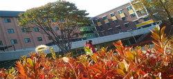 มหาวิทยาลัยเซ-มยอง