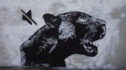 """รวมผลงานภาพศิลปะ กราฟฟิตี้ """"เสือดำ"""" ณ ทุ่งใหญ่นเรศวร"""