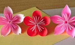 ชมดอกไม้อย่างรู้จริง บอกความแตกต่างระหว่างดอกบ๊วย ดอกท้อ และดอกซากุระได้ง่ายๆ