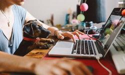 Work from Home (WFH) คืออะไร มีข้อดีอะไร จากการทำงานที่บ้านบ้าง?