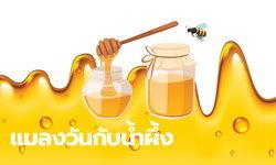 นิทานอีสป : นิทานเรื่อง แมลงวันกับน้ำผึ้ง