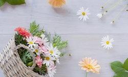 """รวมดอกไม้ที่มีความหมายว่า """"รัก"""" ของคนญี่ปุ่น"""