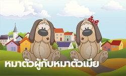 นิทานอีสป :  หมาตัวผู้กับหมาตัวเมีย