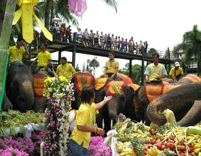 """เปิดประวัติ """"วันช้างไทย"""" 13 มีนาคม ในทุกปี"""