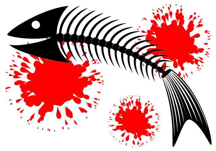 ปลาตาย ทำไมต้องหงายท้องขึ้น