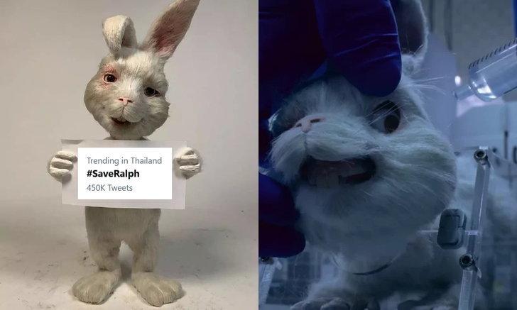 #SaveRalph กระแสต่อต้านการทารุณกรรมสัตว์จากการทดลองผลิตภัณฑ์ความงาม