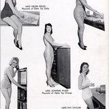 หนังสือรุ่นธีม Playboy