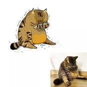 มีมแมว