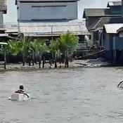 นักเรียนข้ามแม่น้ำด้วยกล่องโฟม