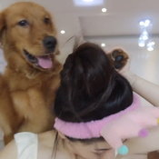 แต่งหน้ากับหมา