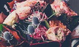 """เป็นไปได้ไหมที่ """"พืช"""" จะแสดงความรู้สึก สุข เศร้า เหงา สนุก ให้มนุษย์รู้"""
