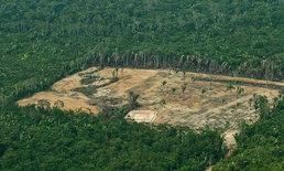 ข่าวร้าย... ป่าอเมซอนดำดิ่งสู่จุดที่มิอาจหวนคืน