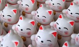 """ความหมายในเชิงสัญลักษณ์ของ """"สัตว์ 5 ชนิด"""" ในวัฒนธรรมญี่ปุ่น"""