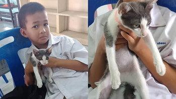 เมื่อนักเรียนแอบลักลอบเอาแมวมาโรงเรียน เรื่องราวชวนอมยิ้มกับคุณครูจึงเกิดขึ้น