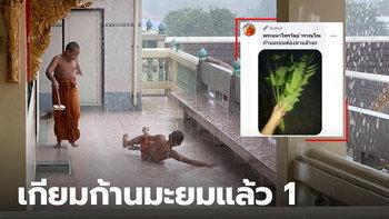 ก้านมะยมในมือลั่น หลวงพี่โพสต์ภาพ สองสามเณร เริงร่า เล่นน้ำฝน อย่างสุดเหวี่ยง