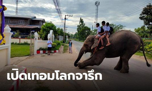 ขี่ช้างไปโรงเรียน นักเรียนจัดเต็ม เปิดเทอมทั้งที ต้องเอาให้โลกได้จารึก