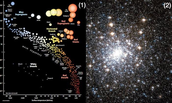กระบวนการแวมไพร์ คืนชีพดาวฤกษ์! ทำให้ดาวฤกษ์อายุมากกลับมาร้อนและสว่าง