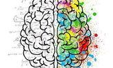 จิตวิทยา 20 ข้อเพื่อทำความเข้าใจเพื่อนมนุษย์