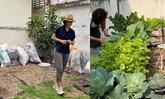 """ปลูกผักแบบได้ข้อคิด """"กระเต็น วราภรณ์"""" สอนตัวเองด้วยการปลูกผัก"""