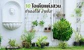 10 ไอเดียแต่งสวนในบ้านทำเองก็ได้ ง่ายจัง