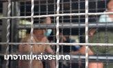 ประจวบฯ จับกุม 33 แรงงานเถื่อนลักลอบผ่านแดนเข้าไทย หวังไปทำงานมหาชัย-ปราณบุรี