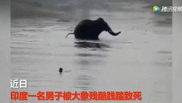 ชายอินเดียลงเล่นน้ำในแม่น้ำ ถูกช้างป่าอารมณ์ร้ายไล่กระทืบดับ