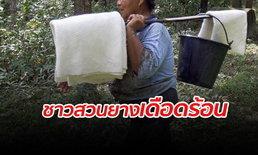 ชาวสวนยางเศร้า ถูกยึดรถ-ยึดบ้าน หลังราคาคายางตกต่ำ เตรียมร้องรัฐบาลช่วย