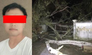 อุบัติเหตุเศร้า ลมพัดต้นมะขามยักษ์ล้มทับปลัดหนุ่มหล่ออนาคตไกล เสียชีวิตคาที่