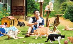 คนรักแมวต้องไม่พลาด Neko Atsume หนังจากแอพเกมสุดฮิต