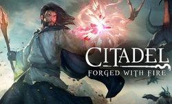 Citadel: Forged With Fire เกมโอเพ่นเวิลด์ลูกผสมแนวสกายริม