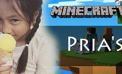 แชร์กันลั่น หนูน้อยคนไทยวัย 8 ขวบสตีมเกม Minecraft เป็นภาษาอังกฤษ